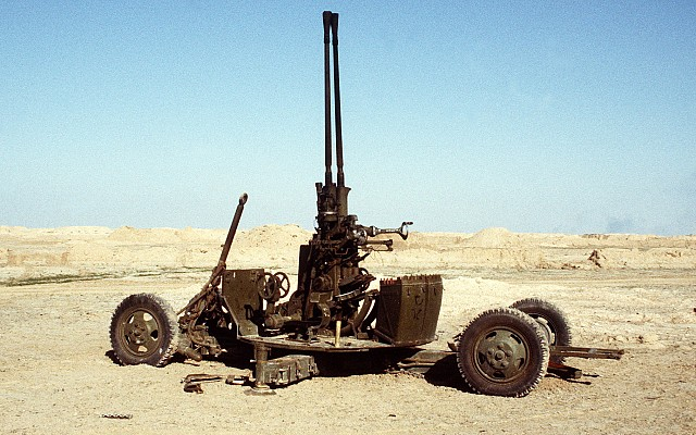 Type 65