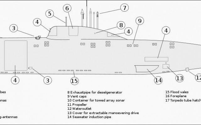 Akula line drawing